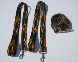 Hot Rod Flames Wishbone Dog Leash