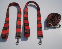 Pirate Wishbone Dog Leash