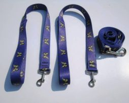 Purple Butterfly Wishbone Dog Leash