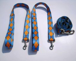 Wishbone Leash blue and orange argyle pattern